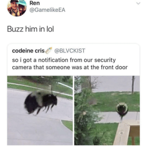 Buzzzz: Ren  @GamelikeEA  Buzz him in lol  codeine cris BLVCKIST  so i got a notification from our security  camera that someone was at the front door Buzzzz