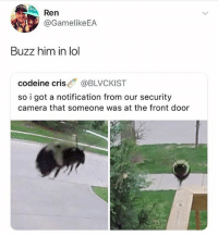 Bee puns aren't that great. I don't get what all the buzz is about. 🤓🐝: Ren  @GamelikeEA  Buzz him in lol  codeine cris@BLVCKIST  so i got a notification from our security  camera that someone was at the front door Bee puns aren't that great. I don't get what all the buzz is about. 🤓🐝