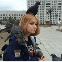 """""""I've failed all of my exams, but the pigeons accepted me as their leader so I have that going for me"""" 😂: rener Er ist, te'""""va it lus罷 """"I've failed all of my exams, but the pigeons accepted me as their leader so I have that going for me"""" 😂"""