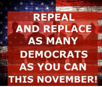 Memes, 🤖, and Can: REPEAL  AND REPLACE  AS MANY  DEMOCRATS  AS YOU CAN  THIS NOVEMBER!