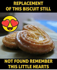 Memes, Hearts, and 🤖: REPLACEMENT  OF THIS BISCUIT STILL  NOT FOUND REMEMBER  THIS LITTLE HEARTS