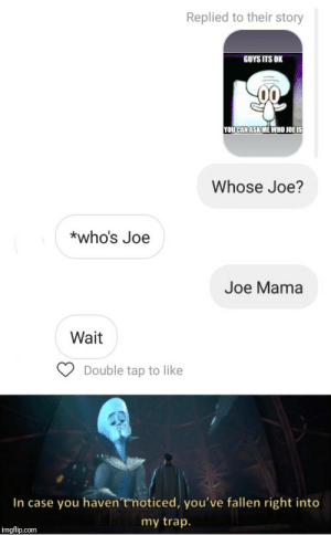 One for grammar bros: Replied to their story  GUYS ITS OK  YOUCAN ASK ME WHO JOË IS  Whose Joe?  *who's Joe  Joe Mama  Wait  Double tap to like  In case you haven'tmoticed, you've fallen right into  my trap.  imgflip.com One for grammar bros