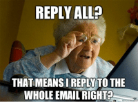 My life at this moment...at work.: REPLY ALL  THATMEANSIREPLATTO THE  WHOLE EMAIL RIGHT My life at this moment...at work.