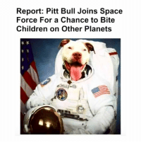 Children, Memes, and Planets: Report: Pitt Bull Joins Space  Force For a Chance to Bite  Children on Other Planets Heroic doggo! ❤️❤️❤️❤️