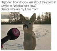 America, Bambi, and Fucking: Reporter: how do you feel about the political  turmoil in America right now?  Bambi: where's my fukin mom So. Fucking. Sad. 😫😫😫😫