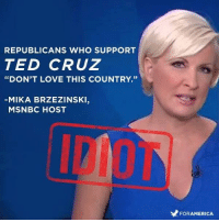 "America, Love, and Ted: REPUBLICANS WHO SUPPORT  TED CRUZ  ""DON'T LOVE THIS COUNTRY.""  MIKA BRZEZINSKI,  MSNBC HOST  FOR AMERICA"