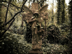 requiem-on-water:  Abney Park Cemetery, London by OkeMani : requiem-on-water:  Abney Park Cemetery, London by OkeMani