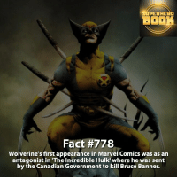 """Have you read that comic? Turn on my post notifications if you haven't yet, thank you! - marvel superhero facts marvelfacts supervillain rocketracoon spiderman marveluniverse anime marvelstudios xmen jeremyrenner avengers comics mcu marvelart marvelcomics teamcap civilwar teamironman ironman avengers guardiansofthegalaxy logan captainamerica deadpool wolverine captainamericacivilwar ===================================: RERHERO  BOOK  Fact #778  Wolverine's first appearance in Marvel Comics was as an  antagonist in """"The Incredible Hulk' where he was sent  by the Canadian Government to kill Bruce Banner. Have you read that comic? Turn on my post notifications if you haven't yet, thank you! - marvel superhero facts marvelfacts supervillain rocketracoon spiderman marveluniverse anime marvelstudios xmen jeremyrenner avengers comics mcu marvelart marvelcomics teamcap civilwar teamironman ironman avengers guardiansofthegalaxy logan captainamerica deadpool wolverine captainamericacivilwar ==================================="""