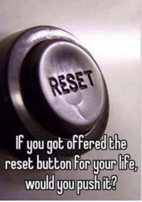Dank, Life, and 🤖: RESET  uou got offered the  reset button for your life,  Would you push