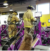 9/11, Andrew Bogut, and Memes: RESPECT! At exactly 8:46AM (the moment the first plane hit the North Tower on 9-11) these two firefighters climbed all 110 stories of the World Trade Center on a stair master to honor the fallen heroes lost on 9-11. 😢💔🙏 NeverForget stupiddemocrats donaldtrump guncontrol patriot trump yeeyee presidentdonaldtrump draintheswamp makeamericagreatagain trumptrain triggered ------------------ FOLLOW👉🏼 @conservative.american 👈🏼 FOR MORE🇺🇸🇺🇸