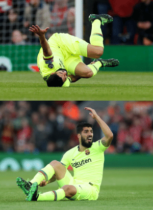 Memes, Respect, and Luis Suarez: RESPECT   Rakuten Nobody:  Not one single soul:  Luis Suarez: https://t.co/HzqOPcEEWg