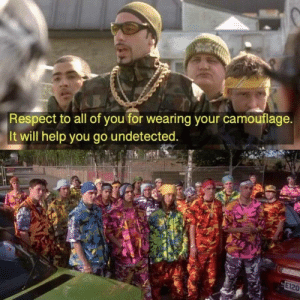 Camouflage: Respect to all of you for wearing your camouflage.  It will help you go undetected.  E120