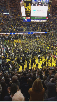 West Virginia fans rush court and sing Country Roads after beating Baylor https://t.co/CXsfXt4nRG: RESPECT  UNITED BANK  MOUNTAINEK  WINI West Virginia fans rush court and sing Country Roads after beating Baylor https://t.co/CXsfXt4nRG