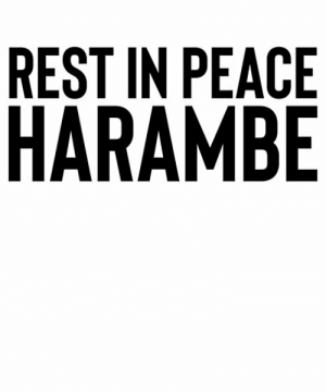 """Rest In Peace Harambe / Dank Meme Funny"""" Posters by StrangeStreet ...: REST IN PEACE  HARAMBE Rest In Peace Harambe / Dank Meme Funny"""" Posters by StrangeStreet ..."""