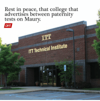 Lawyer, Maury, and Memes: Rest in peace, that college that  advertises between paternity  tests on Maury.  CAFE  IT  Technical Institute  ITT ITT Tech announced it will close all of its schools, freeing up airtime for more car accident lawyer commercials.