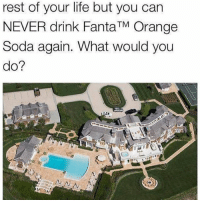 Life, Memes, and Soda: rest of your life but you can  NEVER drink FantaTM Orange  Soda again. What would you  do? Yep