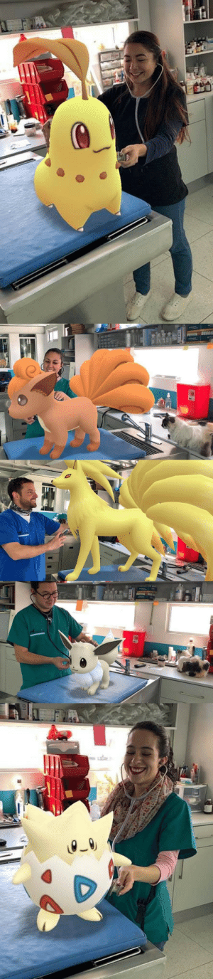 retrogamingblog:A veterinary hospital in Mexico used Pokemon Go's snapshot feature to turn their office into a Pokemon Center: retrogamingblog:A veterinary hospital in Mexico used Pokemon Go's snapshot feature to turn their office into a Pokemon Center