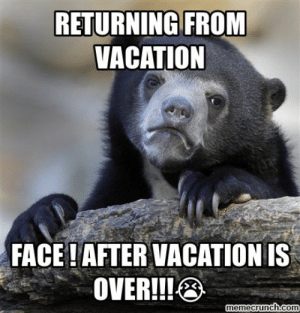 And Just Like That Vacation Over Confession Cat Make A Meme