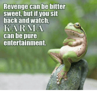 Dank, Revenge, and Karma: Revenge can be bitter  sweet, but if you sit  back and watch,  KARMA  can be pure  entertainment.