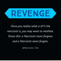 REVENGE Once You Realize What a Sh T the Narcissist Is You May Want