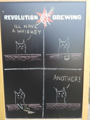 Revolution, Another, and Cat: REVOLUTION  BREWING  ANOTHER! This bar obviously owns a cat