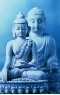 Memes, Buddha, and 🤖: revreverve The secret of health for both mind and body is not to mourn for the past, worry about the future, or anticipate troubles, but to live in the present moment wisely and earnestly.  ~ The Buddha ~