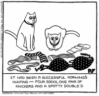 Hunters... #Cats #Ontheprowl #Rupertfawcett: RF  IT HAD BEEN A SUCCESSFUL MORNINGS  HUNTING  FOUR SOCKS, ONE PAIR OF  KNICKERS AND A SPOTTY DOUBLE D  FACEBOOK .COM/ON THE PROVUL CAT CARTOONS Hunters... #Cats #Ontheprowl #Rupertfawcett
