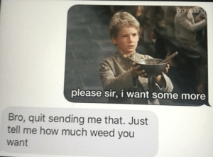 Dank, Memes, and Some More: rgra  please sir, i want some more  Bro, quit sending me that. Just  tell me how much weed you  want Me_irl by SalamiFarmi MORE MEMES