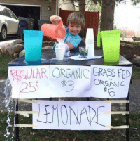Memes, Single, and 🤖: RGULAR ORGANIC GRASS FE  ORGANIC This child is smarter than every single one of you. Except Elon Musk. Elon Musk is smarter than this kid. Does Elon Musk follow me?