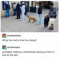 Don't ask dumb questions nerd: rheabekkahc  What the hell is that fox doing?  vardaesque  probably making a withdrawal seeing as he's in  line at the atm Don't ask dumb questions nerd