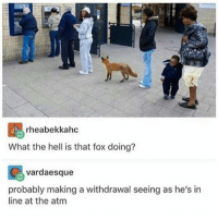 For fox sake: rheabekkahc  What the hell is that fox doing?  vardaesque  probably making a withdrawal seeing as he's in  line at the atm For fox sake