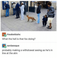 @_theblessedone is sick: rheabekkahc  What the hell is that fox doing?  vardaesque  probably making a withdrawal seeing as he's in  line at the atm @_theblessedone is sick
