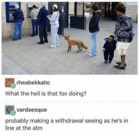 """Memes, Http, and Hell: rheabekkahc  What the hell is that fox doing?  vardaesque  probably making a withdrawal seeing as he's in  line at the atm <p>Swiper no swiping via /r/memes <a href=""""http://ift.tt/2vHcthb"""">http://ift.tt/2vHcthb</a></p>"""