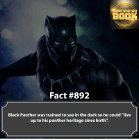 """What is one thing you like about Black Panther? - marvel superhero facts marvelfacts supervillain rocketracoon spiderman marveluniverse anime marvelstudios xmen daredevil avengers comics mcu marvelart marvelcomics teamcap civilwar teamironman ironman avengers deadpoolmovie blackpanther captainamerica deadpool blackpanther captainamericacivilwar ===================================: RHERO  BOOK  Fact #892  Black Panther was trained to see in the dark so he could """"live  up to his panther heritage since birth'. What is one thing you like about Black Panther? - marvel superhero facts marvelfacts supervillain rocketracoon spiderman marveluniverse anime marvelstudios xmen daredevil avengers comics mcu marvelart marvelcomics teamcap civilwar teamironman ironman avengers deadpoolmovie blackpanther captainamerica deadpool blackpanther captainamericacivilwar ==================================="""