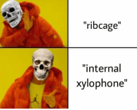 "Xylophone, Ribcage, and Internal: ""ribcage""  I1  ""internal  xylophone"""