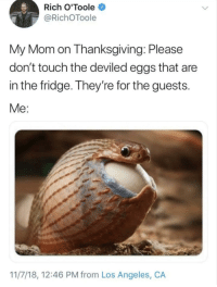Thanksgiving, Los Angeles, and Never: Rich O'Toole  @RichOToole  My Mom on Thanksgiving: Please  don't touch the deviled eggs that are  in the fridge. They're for the guests.  Me:  11/7/18, 12:46 PM from Los Angeles, CA Can't stop, won't stop, will never stop: