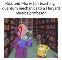 """Rick and Morty, Tumblr, and Blog: Rick and Morty fan teaching  quantum mechanics to a Harvard  phvsics professor. <p><a href=""""http://memehumor.net/post/166212405987/only-smart-people-watch-rm"""" class=""""tumblr_blog"""">memehumor</a>:</p>  <blockquote><p>Only smart people watch R&amp;M.</p></blockquote>"""