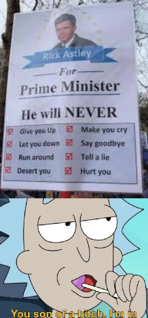 How to win an election by geminiboy001 MORE MEMES: Rick Astley  For  Prime Minister  He will NEVER  Make you cry  E  Give you Up  Say goodbye  Let you down  M Tell a lie  E Run around  Desert you  M Hurt you  You son of a bitch, I'm in How to win an election by geminiboy001 MORE MEMES