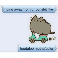 Toodaloo muthafuka cat