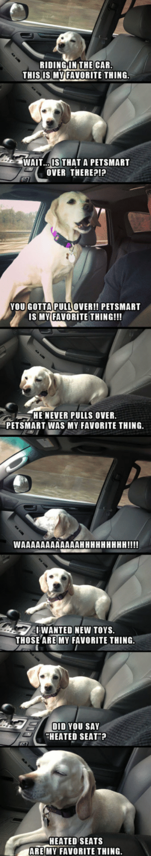 Dogs, Tumblr, and Blog: RIDINGINTHE CAR  THIS IS MYFAVORITE THING.  WAIT..IS THAT A PETSMART  OVER THEREP!?  YOUGOTTAPULLOVER!! PETSMART  IS MY FAVORITE THING!!!  HE NEVER PULLS OVER  PETSMART WAS MY FAVORITE THING.  WANTED NEW TOYS  THOSE ARE MY FAVORITE THING  DID YOU SAY  HEATED SEAT?  HEATED SEATS  ARE MY FAVORITE THING srsfunny:A Dog's Favorite Thing