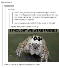 Spiderbro....: rincess  the blackship  Xbostons  what if every spider ive ever crushed thought it was  like,  living in my house with me the whole time and one day ijust  flew off the handle and murdered it. like it just thought we  were hanging out together.  has every spider died while feeling a sense of betrayal  literally everyone on here is on drugs  ITHOUGHT WE ERE FRIENDS  WHY WOULD YOU SAY SOMETHING LIKE THAT Spiderbro....