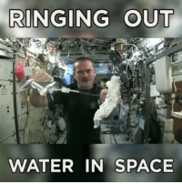 Clothes, Memes, and Canadian: RINGING OUT  WATER IN SPACE What ringing a cloth looks like in zero gravity 😱 (Vid: Canadian Space Agency)