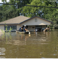 Senior Correspondent Rick Leventhal caught Beaumont firefighters rescuing two horses that were stuck on the porch of a home in a neighborhood hit hard by flooding from HurricaneHarvey.: Riok Leventhal Senior Correspondent Rick Leventhal caught Beaumont firefighters rescuing two horses that were stuck on the porch of a home in a neighborhood hit hard by flooding from HurricaneHarvey.