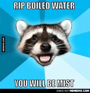 RIP boiled wateromg-humor.tumblr.com: RIP BOILED WATER  YOU WILL BE MIST  СНЕCK OUT MЕМЕРIХ.COM  MEMEPIX.COM RIP boiled wateromg-humor.tumblr.com