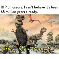 Always in my thoughts and prayers: RIP dinosaurs. I can't believe it's been  65 million years already  8/A-SCIENCE ENTHUSIAST  howights and praes Always in my thoughts and prayers