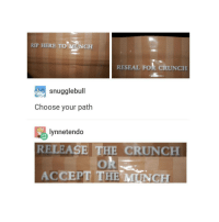 Trendy, Accept, and Rip: RIP HERE TO MUNCH  RESEAL Fok CRUNCH  snugglebull  Choose your path  lynnetendo  RELEASE THE CRUNCH  ACCEPT THE MUNCH lov the cronch