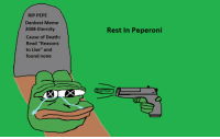 """Rest in Peperoni (OC): RIP PEPE  Dankest Meme  2008- Eternity  Cause of Death:  Read """"Reasons  to Live"""" and  found none  Rest In Peperoni  Stale Pepes Rest in Peperoni (OC)"""