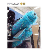 Funny, Got, and Him: RIP SULLEY Damn the poachers got him too. RIP Sully you will be missed 😂😂 monstersinc