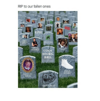 Bad, Chuck Norris, and Memes: RIP to our fallen ones  EPIC  CHUCK  NORRIS  COSSPIRACY  KEANT  coo  STORY  BRO  DAMN  DANIEL  BAD EUCHk  BRIAN  E COMICS im at target