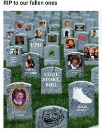 Rip: RIP to our fallen ones  EPIC  Overly  Attached  PHILOSORAPTOR  Girlfriend  CHUCK  NORRIS COO  STOR  BRO.  BAD LUCK  BRIAN  NOT PASS  THERES ALWAYS  ONE  CONSPIRACY  KEANU  DAMN  DANIEL Rip